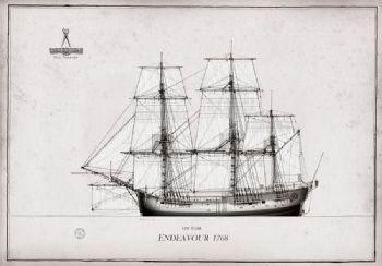 1768 HM Bark Endeavour pen ink study